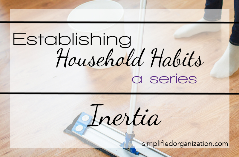 Establishing Household Habits: Inertia
