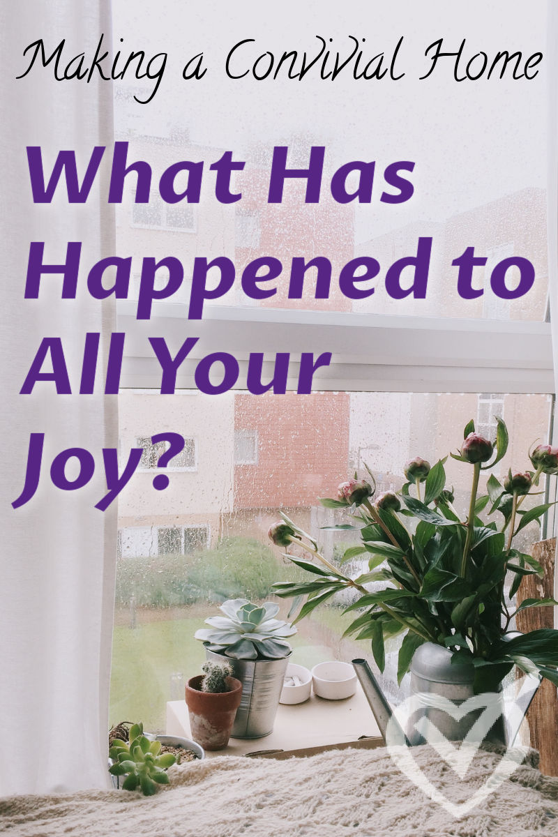 We can be living the life we always wanted, but somehow lose our joy in it. What do we do then? How do we move forward? What happened to our joy?
