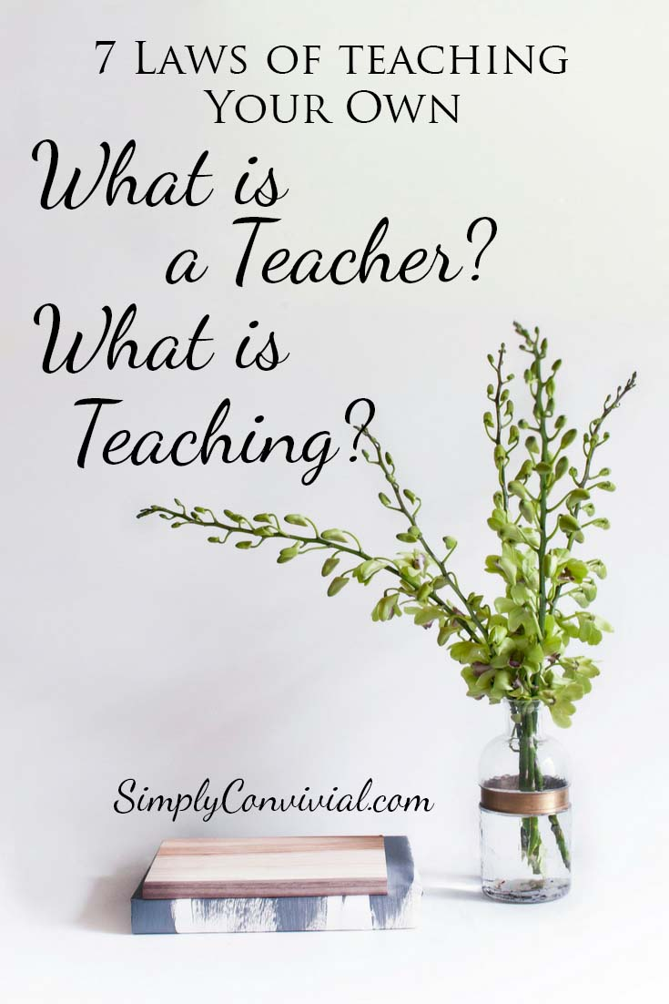 What is a teacher? What is teaching?