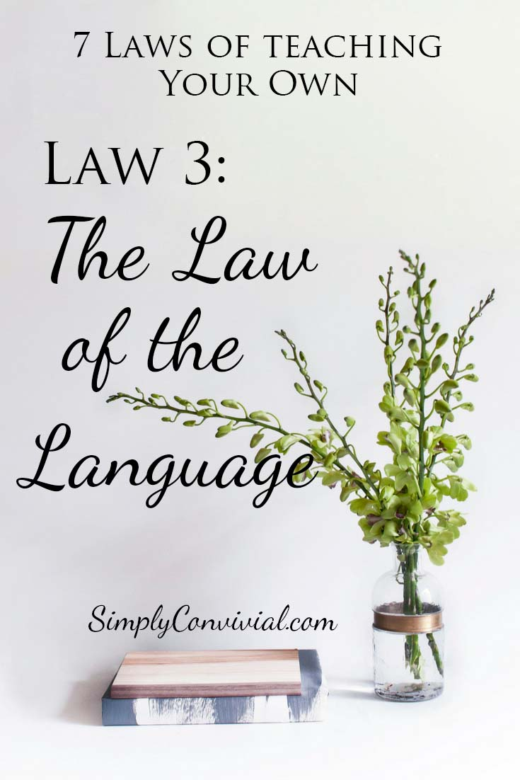 7 Laws of Teaching: Law 3, the Law of the Language.