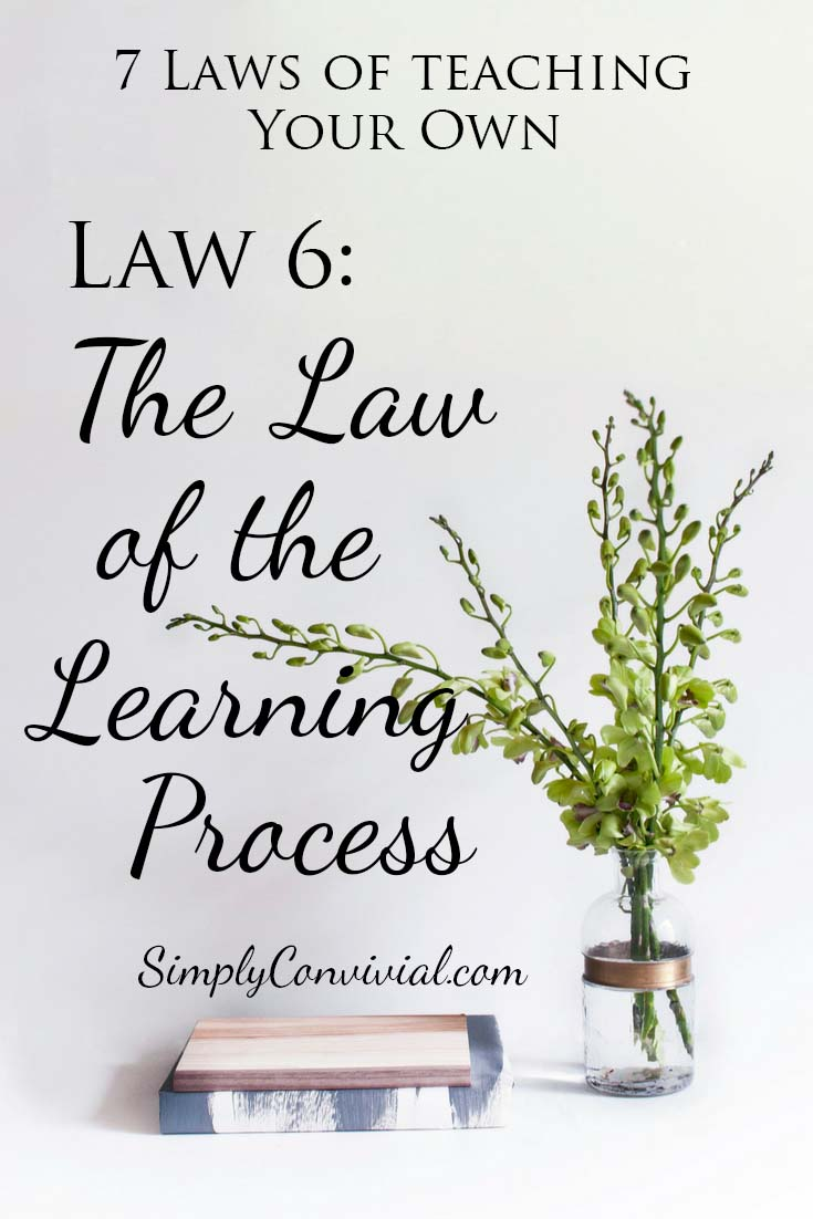 7 Laws of Teaching: Law 6, the Law of the Learning Process.