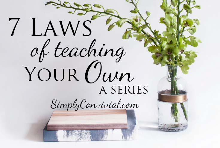 Seven Laws of Teaching your Own Series: The Law of the Teacher