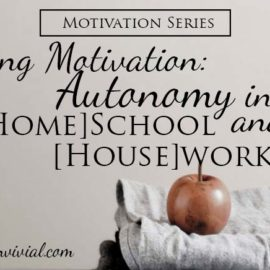 Finding Motivation: Autonomy in [Home] School and [House] Work