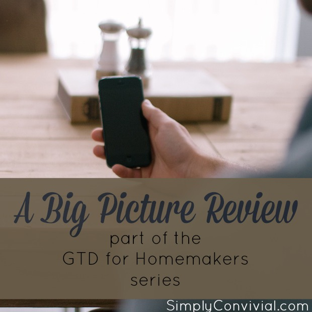 big-picture-review
