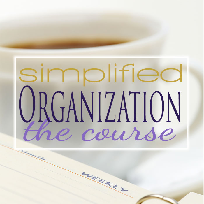Simplified Organization eCourse