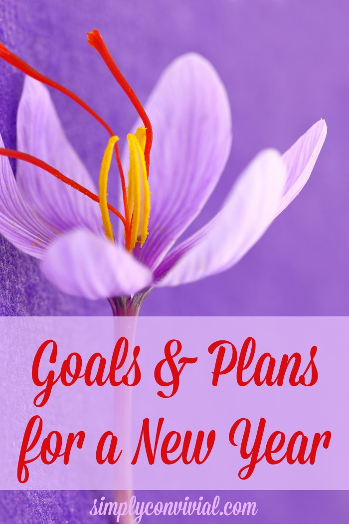 Goals and Plans for a New Year