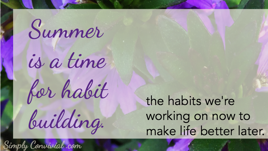 Summer is for habit building - more time, more energy, more attention to devote to character training through habits. Good habits make good character.