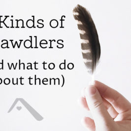 3 Kinds of Dawdling (and what to do with the dawdlers)