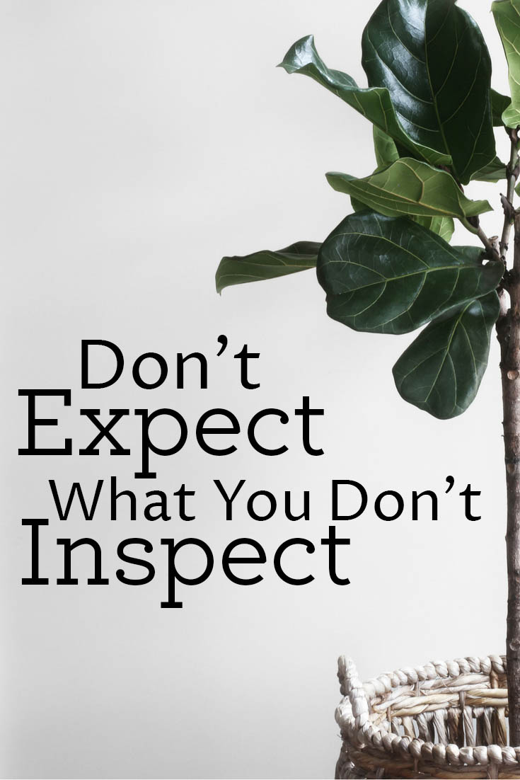 Want homeschool advice from experienced homeschool moms? I was told this and my own experience has confirmed it as the best piece of advice for homeschooling: don't expect what you don't inspect.