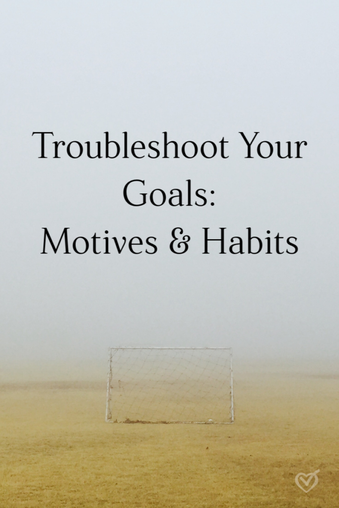 Troubleshoot Your Goals: Motives and Habits