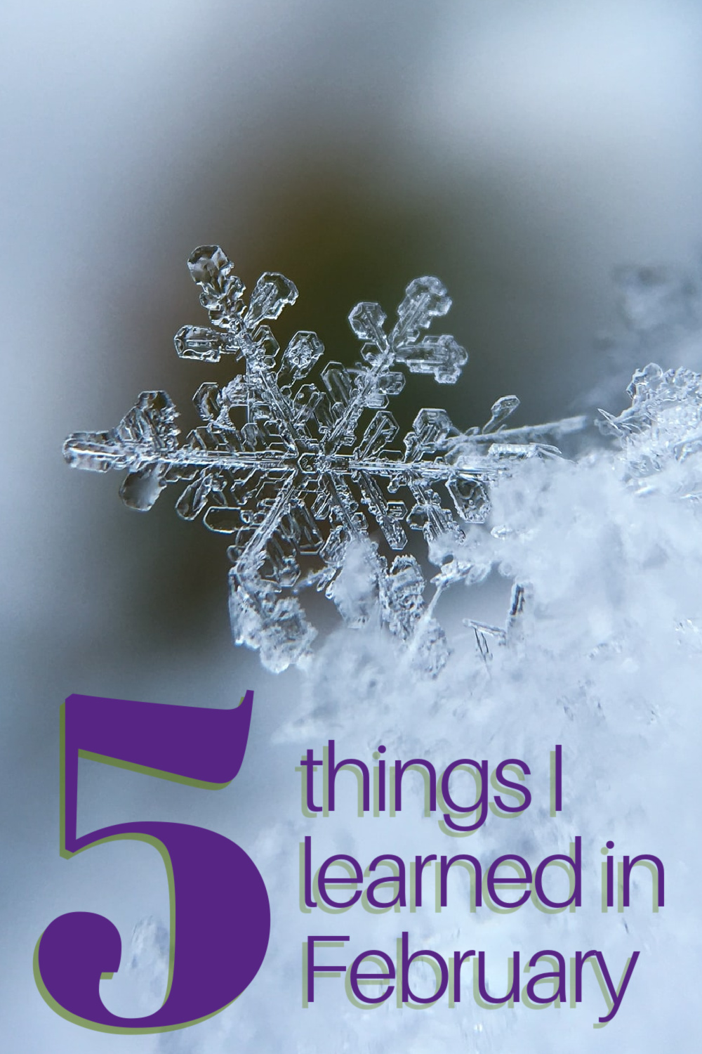 February was cold and snowy, but not nearly so bad as in many places. It was a month to be grateful for what we have. Here are 5 things I learned in the month of February.